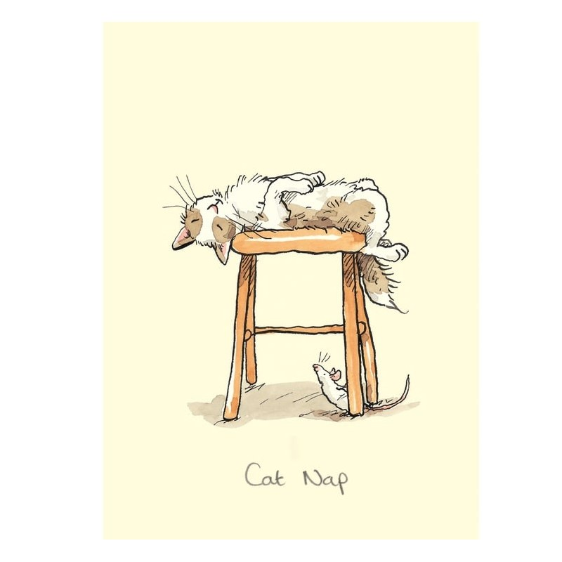 "Carte illustrée ""Cat Nap"" par Anita Jeram"