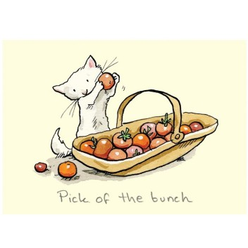 "Carte illustrée ""Pick of the bunch"""