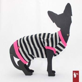 Tee-shirt chat à rayures - Vêtements pour chat et Sphynx - Sphynx clothing