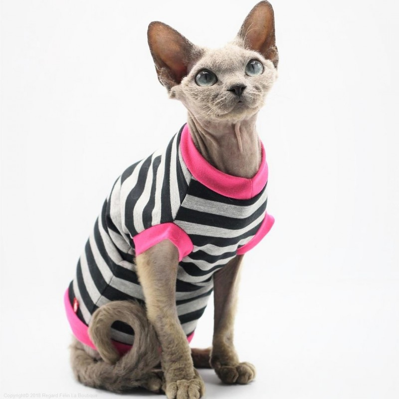 Tee,shirt chat à rayures , Vêtements pour chat et Sphynx , Sphynx clothing