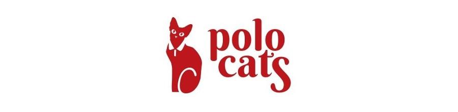 Vêtements pour chat